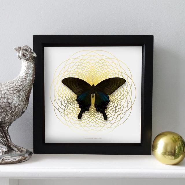 Butterfly artwork - Art Deco - linear art - geometric print. Lovely artwork with butterflies for interior. Gold foil on black card stock