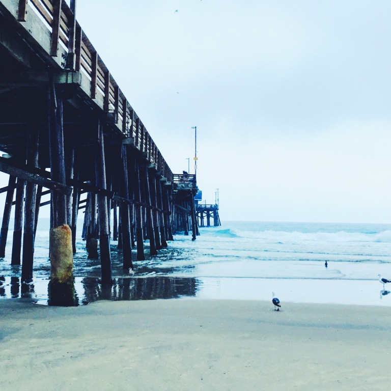 Sunrise at Newport Beach pier - California. Toes in the sand - Seagulls on the attack. Morning routine of surfing and running