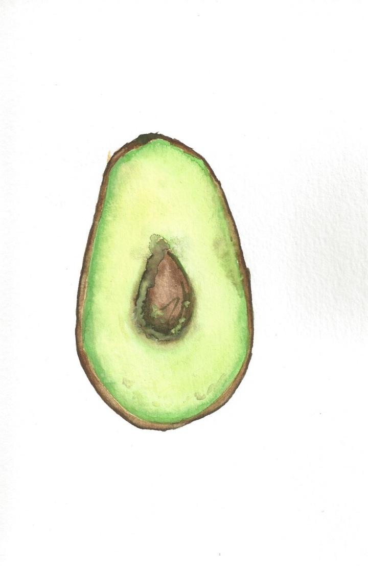 Avocado Series Day 10