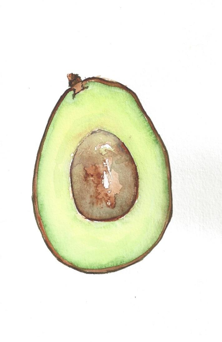 Avocado Series Day 14