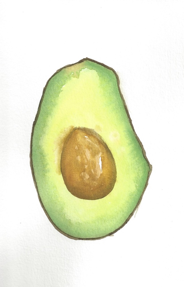 Avocado Series Day 15