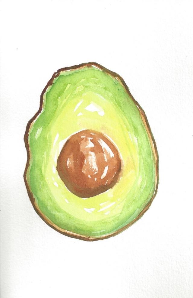 Avocado Series Day 16