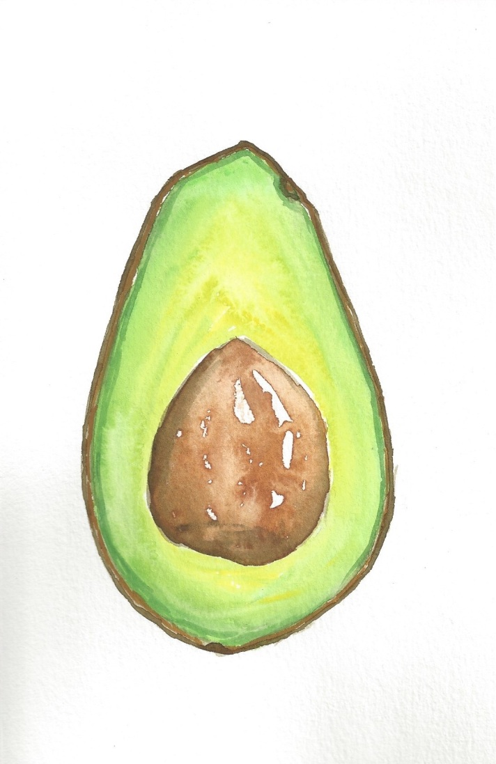 Avocado Series Day 17