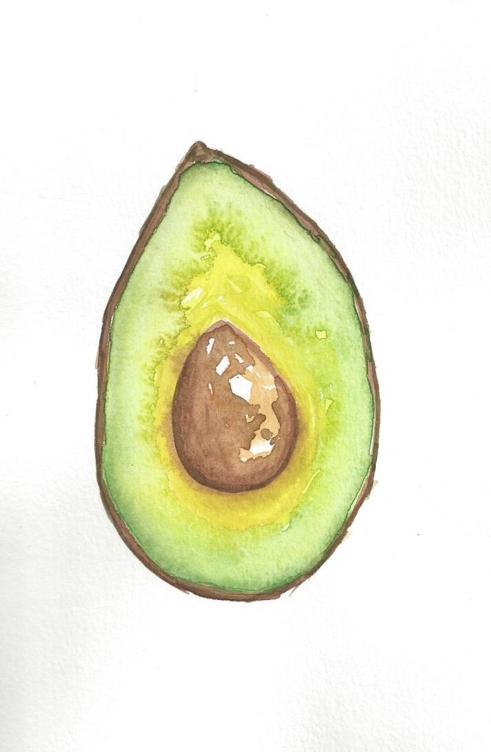 Avocado Series Day 19