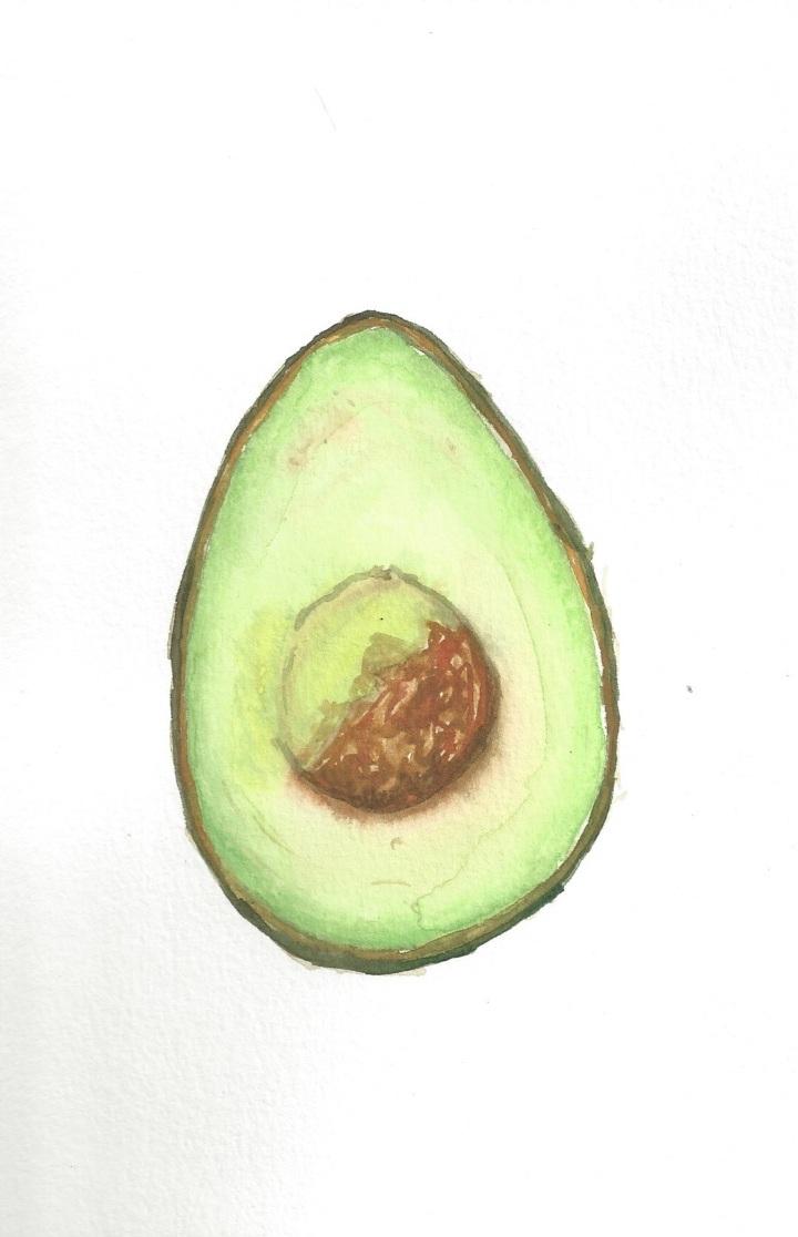 Avocado Series Day 20