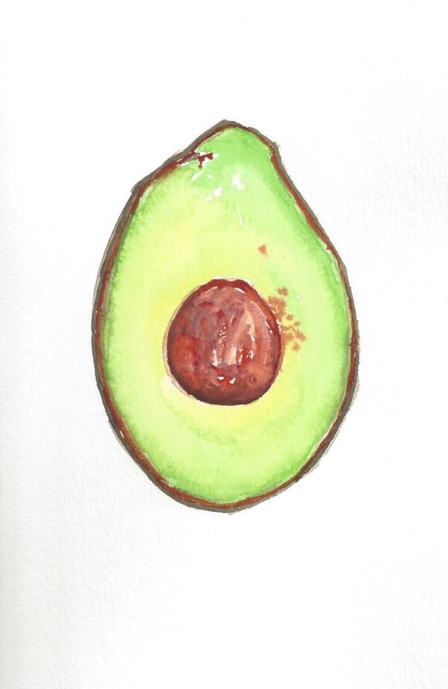 Avocado Series Day 22