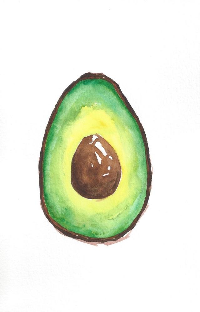Avocado Series Day 24