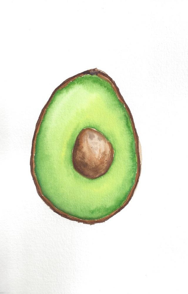 Avocado Series Day 26