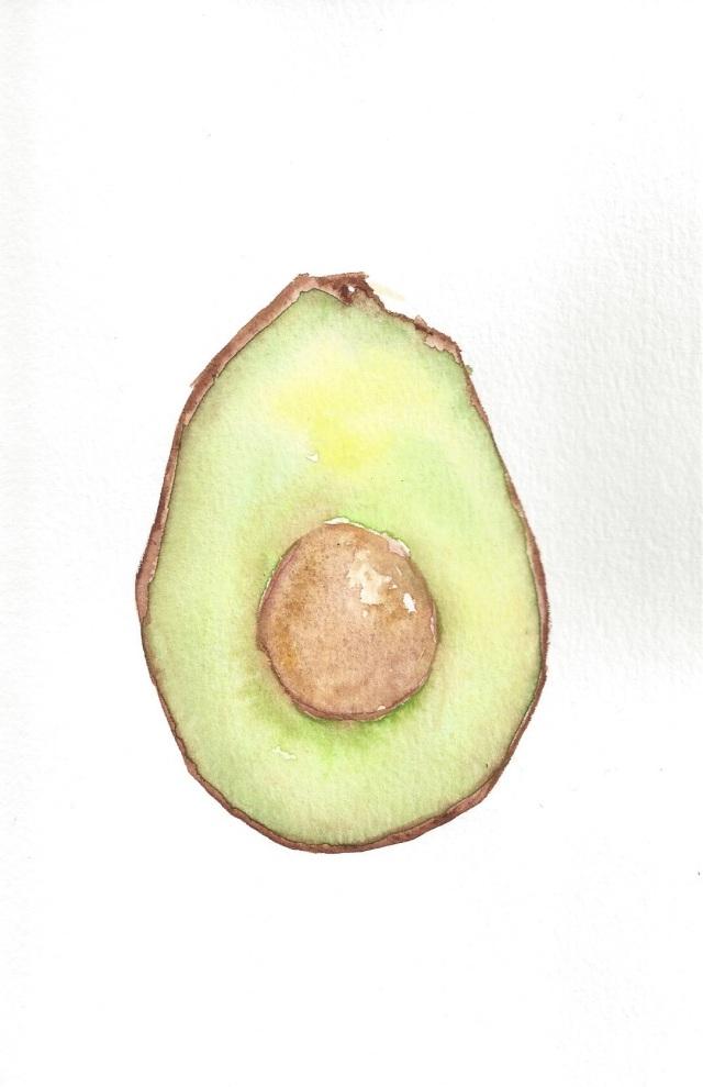 Avocado Series Day 4