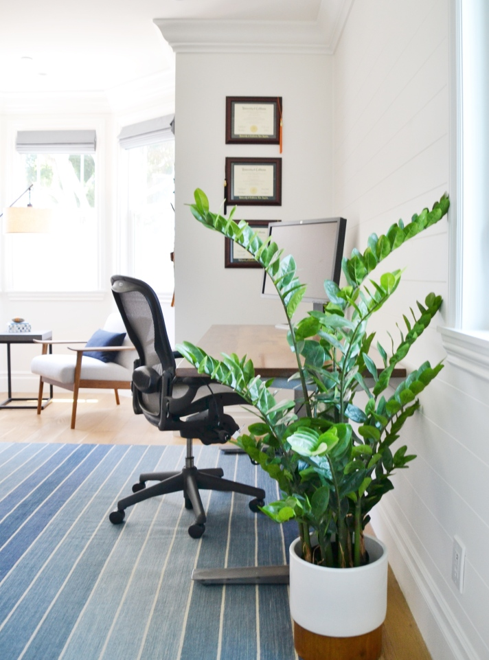 home office concept board - mood board. cool blue and warm wood home office space. layered textiles in a transitional modern office. home office before and after makeover. ski mountain chic. jarvis sit stand desk by fully. zanzibar plant. zz plant. west elm.