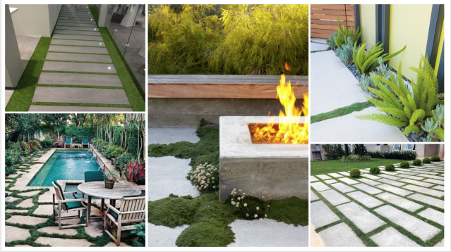 patio concept - concrete slabs with grass or moss between.